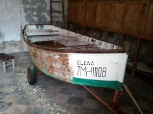 Elena matrícula
